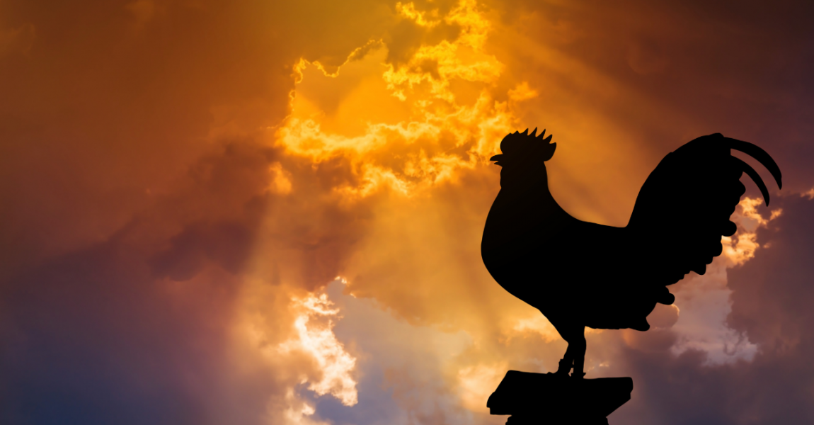 The Rooster and the Resurrection - Matthew 22: 54-62