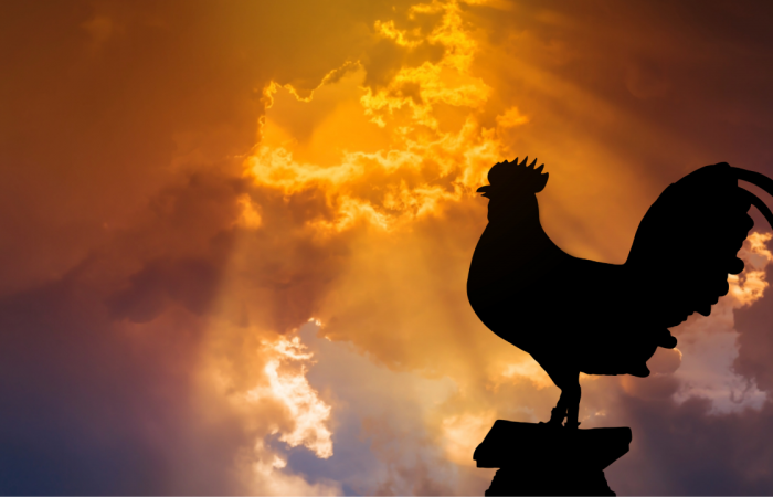 The Rooster and the Resurrection